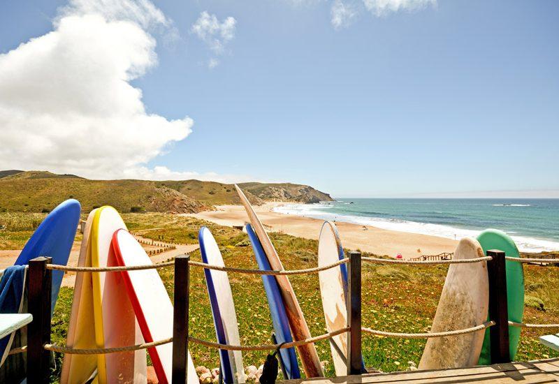 Surf: saiba que perguntas fazer antes de comprar uma prancha de surf nova | Foto: Shutterstock
